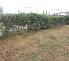 1/8 plot to rent in Shimanzi can put temporary business structure
