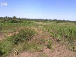 30 acres timau at 550k/acre