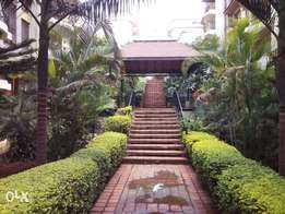 Very Beautiful 3bedrooms and 3bedrooms plus sq in lavington.