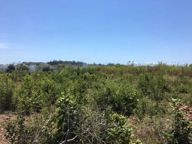Two 2.5 acres plots in galu kinondo beach on row 3 and 4 for sale Mombasa Island - image 6