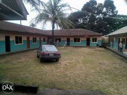 A school on a 2 plot of land at number 2 obidike lane off ACMJS .