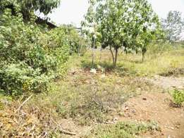 Ruiru Toll stn plot for sale