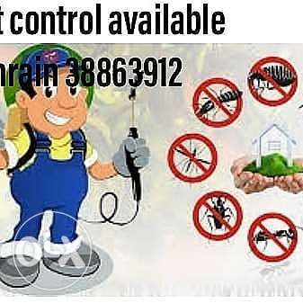 Best pest control available