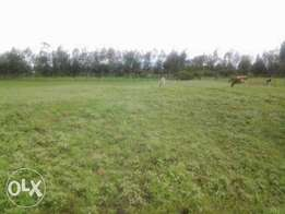 1/8th of an acre for sale next to Elementaita Police post, Nakuru