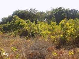3 ACRES FOR SALE IN Mtwapa at 20M PER Acre