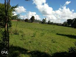 Very prime 50x100 plots. Limuru Kamirithu 400 meters from tarmac road.