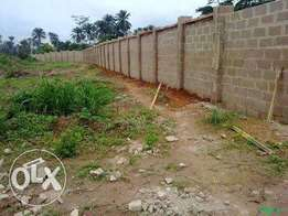 100x100 plot of land for sale
