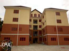 Newly built and fully serviced 2 and 3 bedrom flat for rent in Asokoro