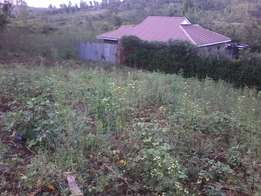 50*100 ft land- Matasia, Ngong