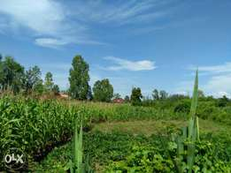 Land for sale kisumu west bara location 500m off kisumu -bondo road