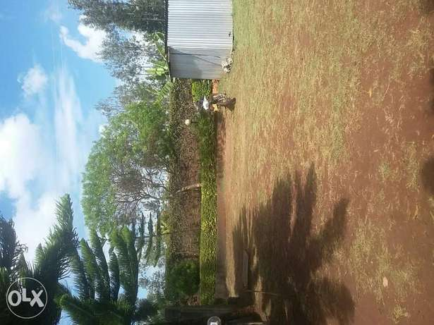kenol plots 1/2 acre. 2km from the highway Thika - image 1