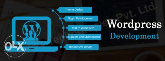 eCommerce Online Shopping Website Development at an affordable price