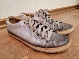 Стильные кожаные кеды кроссовки спортивные туфли 0d5c34e1c6291