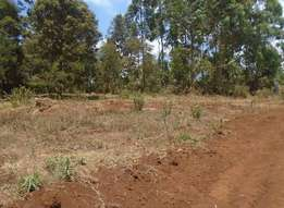50 by 100 plots for sale at maimahiu