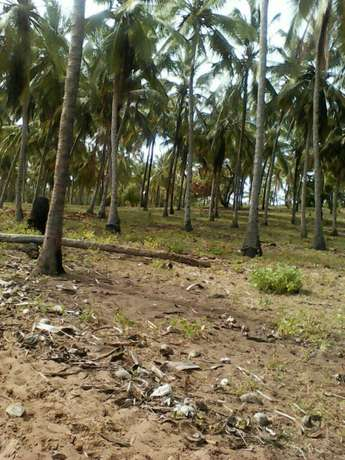 Land for sale Mombasa Island - image 5