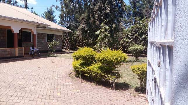 A well located 3 bedroom bungalow ideal for an office space Garden - image 5