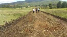 50 by 100 prime plots in Sagana