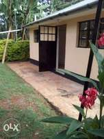 Lavington vacant one bedroom cottage for rent