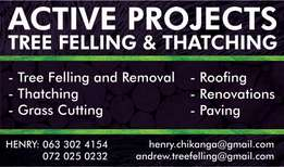 Tree Felling n Grass Cutting and Removal