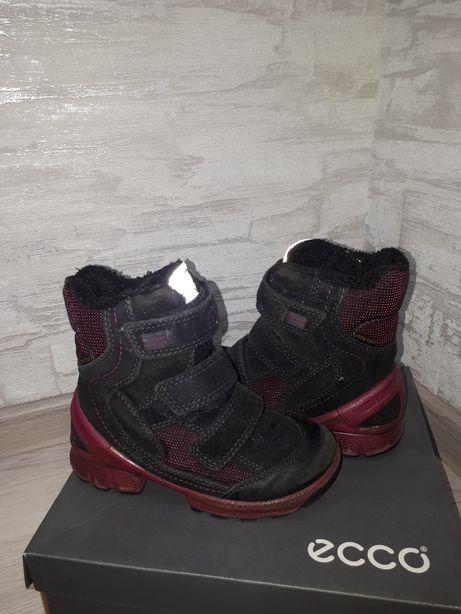 d174a845280b60 Сапожки Ecco Biom зимние термосапоги ботинки экко Дніпро - зображення 7