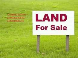 50 plots of land sale at ibeju lekki back of oba palace lekki lagos