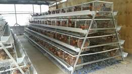 512 layer cages at only 4M