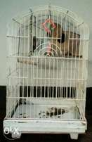 Bird / Parrot cage, 50x50x80cm. All metal with sliding tray.