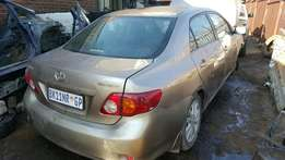 Corolla Profesional Striping for spares