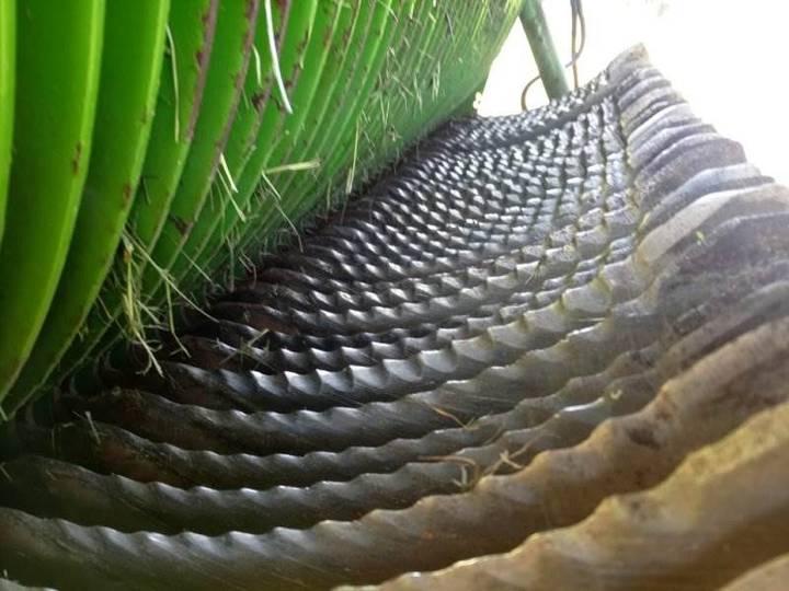 Bergmann Carex 38s - 2012