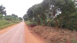 5 acres of land in kalule bombo road , bamunanika road