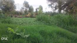 Fertile plots for sale at Mwisho wa Lami near Fly Over from 500k