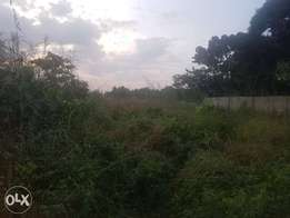 3 plots of Land at Urratta west layout off Mcc road