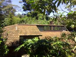 Lakeview 4 bedrooms bungalow to let