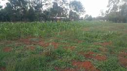 1/2 an acre elgonview with title