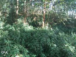 Hi I am selling a land one hectare for estate.