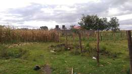 1/4 acre for sale 800mts from tarmac in Kiamunyi,Nakuru