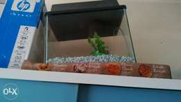 am selling a small fish tank