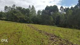 1/4 Plot for sale in Kapsabet Town