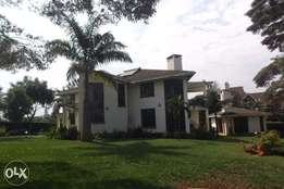 4 bedroom house on 0.5 acre for rent in Runda