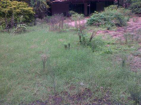 Westland Waiyakiway 0.75 Acre Land For Sale Nairobi CBD - image 5