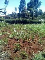 100 by 100 pllot for sale along limuru road ruaka
