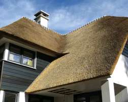 Thatch lapas and houses