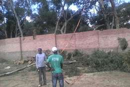 Building , painting , renovation , paving , tilling