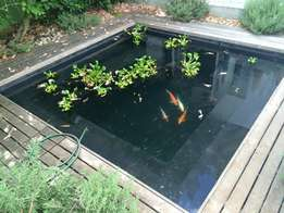 Pond and water feature repairs, building and services