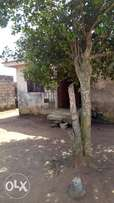 A very Cheap 3 bedroom house for sale at the Suburb of Ayobo Lagos.