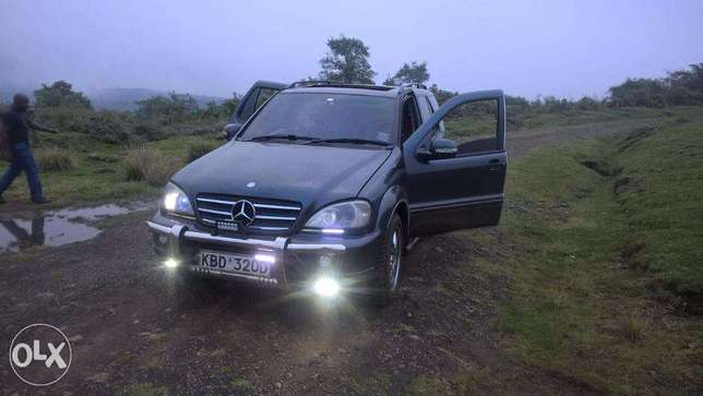 Mercedes Benz ML320 Woodly - image 4