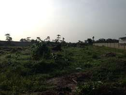 There is a full plot of land measuring 800sqm in estate in Ajah