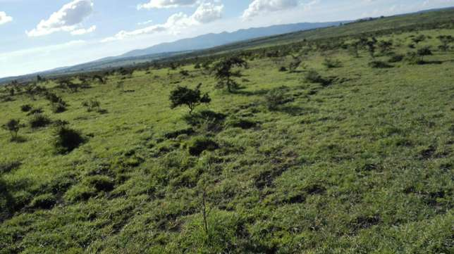 30 acres for sale in ongata rongai Ongata Rongai - image 7