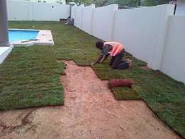 Farm fresh instant lawn supply and installation. topsoil & compost...