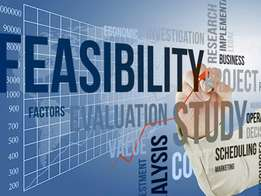 Market and feasibility study and business writting